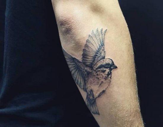 Sparv-tatuering: Betydelse, design, historia och foton