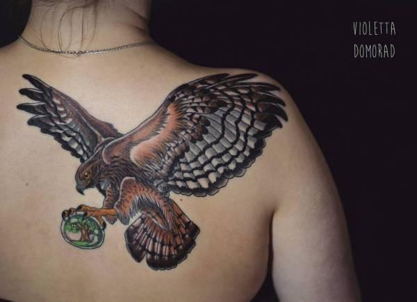 Hök-tatuering: Betydelse, design, historia och foton