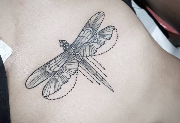 Trollslända tatuering: Betydelse, design, historia och foton Djur Tatuering idéer och betydelser