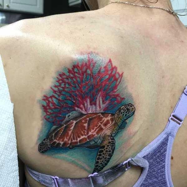 Sköldpadda tatuering: Betydelse, design, historia och foton Djur Tatuering idéer och betydelser
