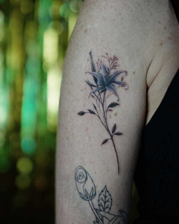 Lilja tatuering: Betydelse, design, historia och foton Blomtatueringar Tatuering idéer och betydelser