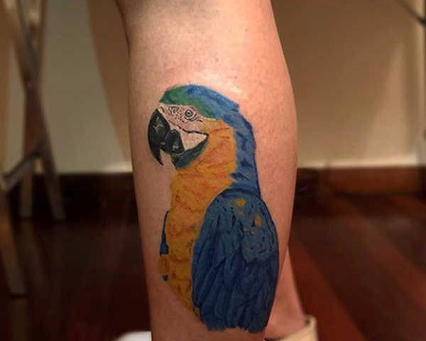 Papegoja tatuering: Betydelse, design, historia och foton Djur Tatuering idéer och betydelser